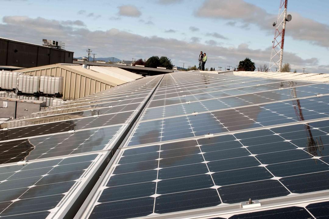 GloryBee Foods Solar