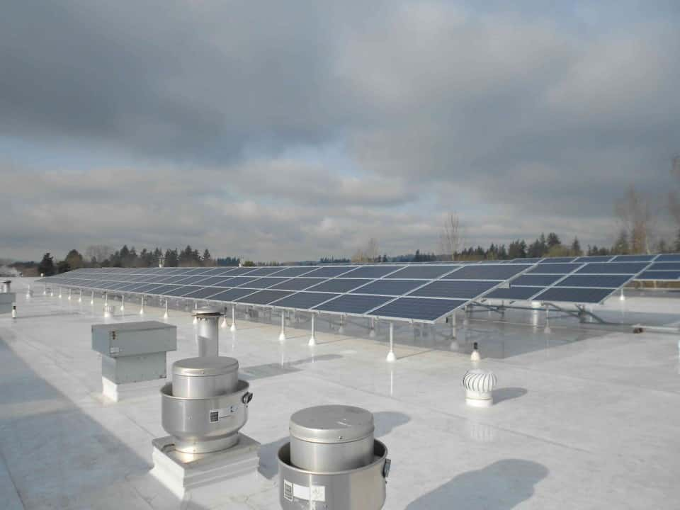 Pacific Foods Solar Electric photovoltaic on TPO roof Oregon PV Conergy 250 watt modules (3)